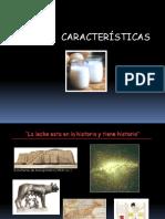 LECHE 1 - CARACTERISTICAS DE LA LECHE - UPT.ppt