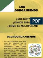 13. Los Microorganismos