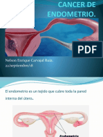CANCER DE ENDOMETRIO.pptx