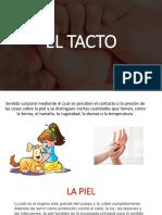 EL TACTO NEUROANATOMIA