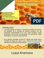 Producción y sanidad apícola