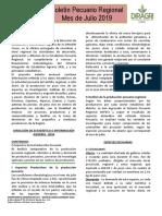 Boletín 07-19
