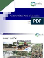 8. Leong Hon Choong_Role of Wetland Plants