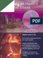 Patologia de Higado y Vias Biliares (1)