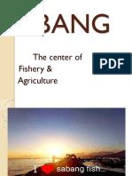 Sabang Calabanga Camarines Sure Powerpoint in Applied Economics