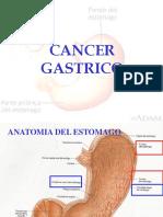 C3 Cancer Gastrico Modificado