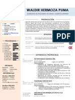 MODELO DE CV