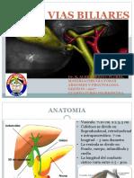 semiiologia basica