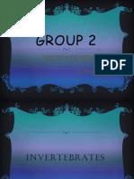 Invertebrates by MLEA