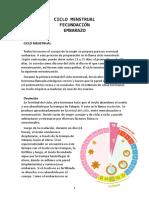 Ficha grafica sobre Ciclo Menstrual