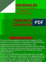 Metabolismo Pr Hc Grasas Arbelo V