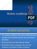 Acidos Nucleicos Power Point