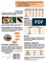 Aspecto Nutricional en Avestruz