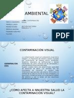 CONTAMINACION VISUAL.pptx