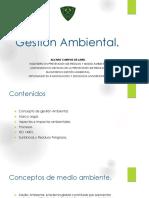 1 Gestion Ambiental Conceptos Basicos_930e54f63eced046a3fece6a1d7f3de4