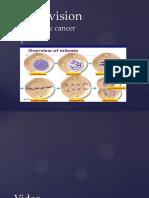 Mitosis Resource 701e69f0 50f5 4cfe a9c5 e6bc6fc824aa