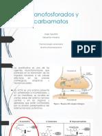 Organofosforados y carbamatos