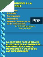 Clase - Introducción a la Patología.ppt