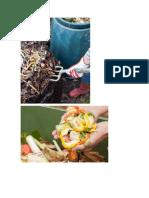 Los Residuos Sólidos Orgánicos y Su Clasificación