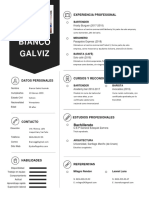 Bianco Galviz Curriculum (1).docx