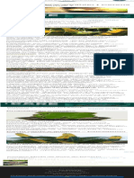 Cacto verde-e-amarelo ( Cereus hildemannianus ) - FazFácil
