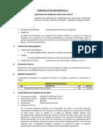 05 Tdr Bienes - Cemento Portland Tipo Ip