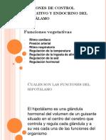 Funciones de Control Vegetativo y Endocrino Del Hipotálamo Yudelka