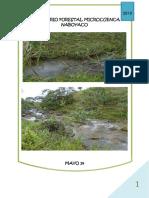 Informe de inventario forestal (2).pdf