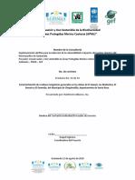 Caracterización Formato PNUD 09-01-2019 Rev Mrjm