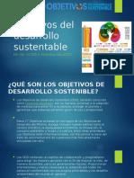 Objetivos Del Desarrollo Sustentable