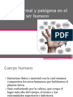 floranormalypatogenaenelserhumano-120904205420-phpapp02.pptx