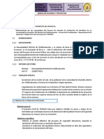PLAN DE TRABAJO PARA ELABORAR ESTUDIO DEFINITIVO