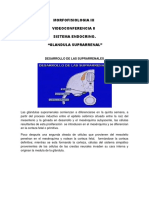 MFH+III+-+AO+08.pdf
