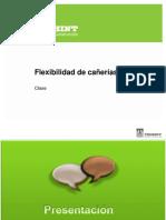 TEIC Flexibilidad Manual Instructor v1