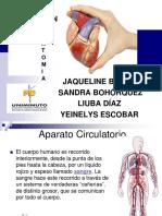 Sistema Circular Diapositivas