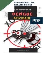 Atividades Dengue- Nm