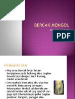 Bercak Mongol & Miliriaris