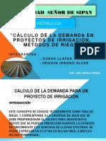 CALCULO DE LA DEMANDA PARA IRREGACION.pptx