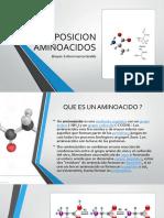 exposicion aminoacidos