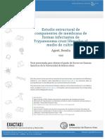 Agustí R. (1999) TD Estudio estructural de componentes de membranas de formas infectantes de Trypanosoma cruzi liberados al medio de cultivo. Universidad de Buenos Aires.pdf