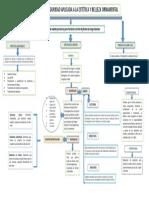 MAPA CONCEPTUAL BIOSEGURIDAD.pptx