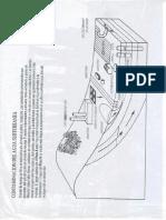 Ilustracion Agua Subterránea