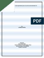 Informe Lineamientos