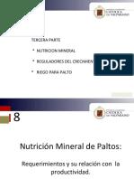 nutricion paltas