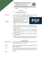 9.2.2.a Sk Standar Layanan Klinis1