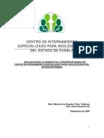 08 Analisis Desde La Perspectiva Interdisciplinaria Del CIEPA