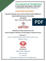 python Report