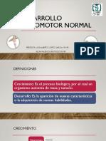 Desarrollo Psicomotor(1) (1)