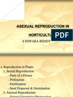 154232947-Asexual-Reproduction-in-Plants-SEREDDY.ppt