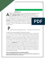 plan vacacional.docx
